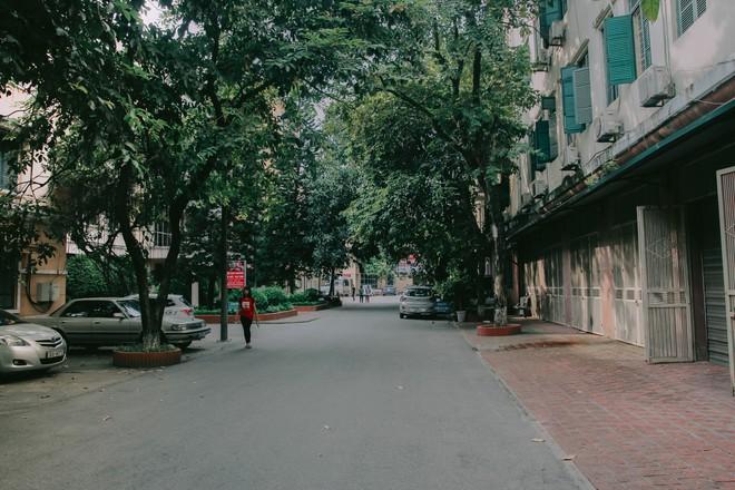 Ở Hà Nội có 1 ngôi trường mà đến cái thùng rác cũng là 1 góc sống ảo so deep - Ảnh 1.
