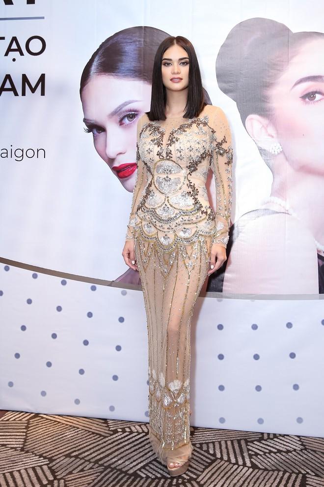 Sau 3 năm đăng quang, Hoa hậu Hoàn vũ Pia ngày càng gợi cảm cùng gu thời trang đẹp xuất sắc - ảnh 5