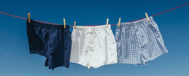 Brief vs boxer: Tranh cãi kinh điển về quần lót nào tốt đã có hồi kết bằng nghiên cứu này - Ảnh 3.