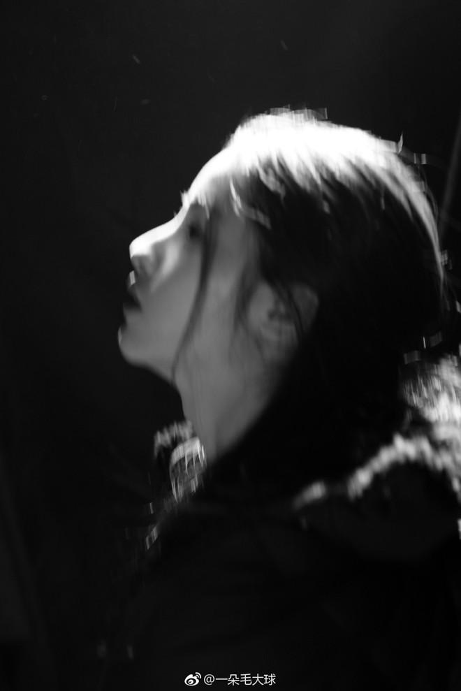 Nhan sắc thoát tục của nàng Tiểu Long Nữ phiên bản mới: Lưu Diệc Phi cuối cùng cũng có đối thủ! - ảnh 11