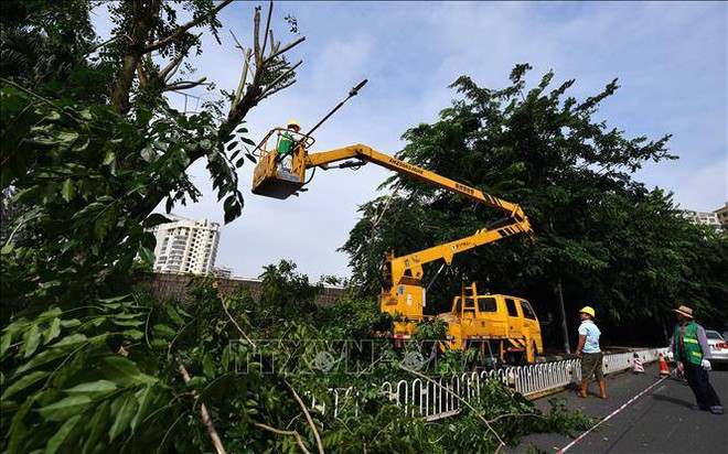 Siêu bão Mangkhut khiến giao thông công cộng tại Quảng Đông (Trung Quốc) tê liệt - ảnh 2