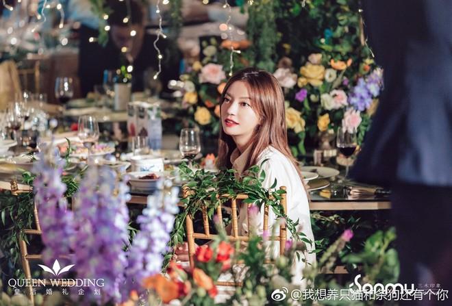 Đám cưới nhỏ bỗng chốc trở thành tiêu điểm chú ý vì sự xuất hiện đẹp hơn hoa của Triệu Vy - ảnh 3