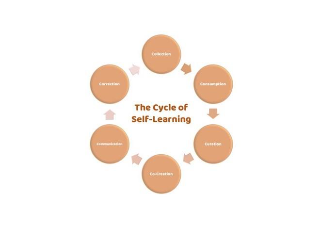 Biểu đồ 6Cs - 6 kỹ năng tự học của giáo sư Mỹ mà chúng ta ai cũng cần nhưng chẳng ai biết đến - ảnh 5