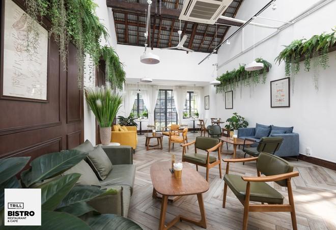 Hà Nội: 3 quán cà phê xanh mướt, mát rượi cực hợp để đi vào những ngày đầu thu - Ảnh 2.