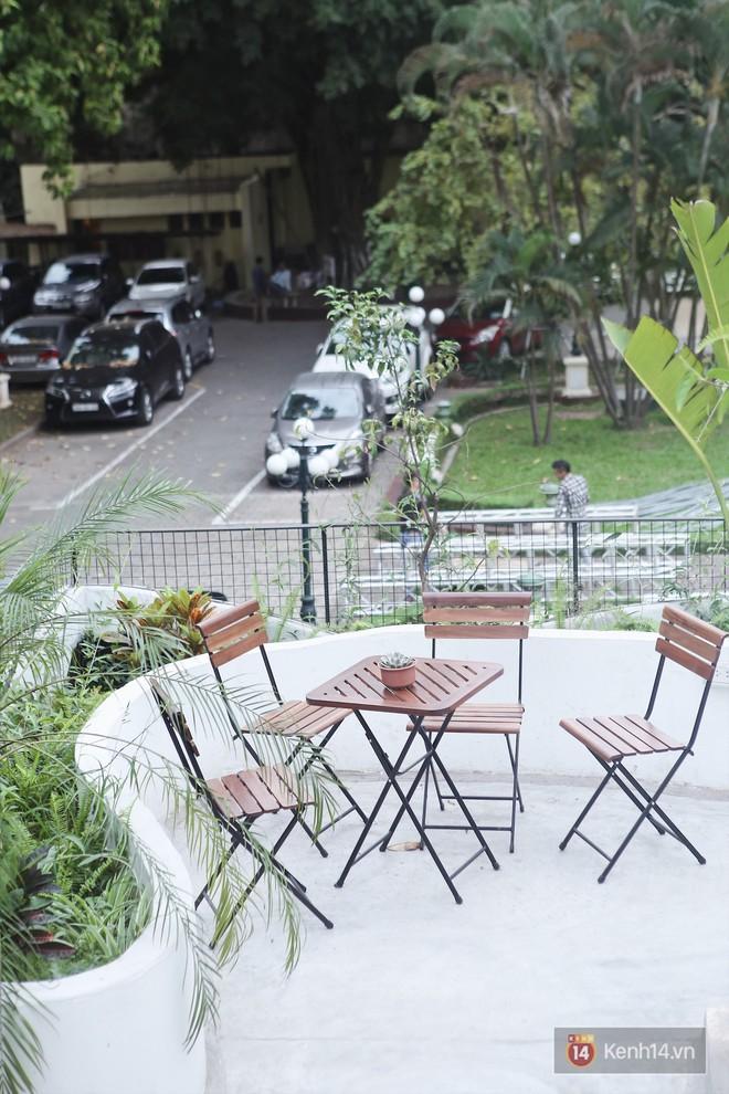 Hà Nội: 3 quán cà phê xanh mướt, mát rượi cực hợp để đi vào những ngày đầu thu - Ảnh 13.