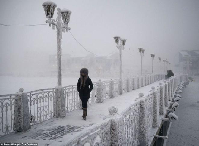 Cả thế giới đang hứng chịu cái lạnh tồi tệ, dự đoán mùa đông lạnh nhất 100 năm qua trở thành hiện thực tại nhiều nơi - ảnh 11