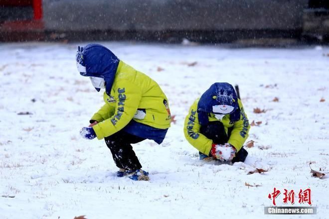 Việt Nam đón giá rét, Trung Quốc cũng gồng mình trước thời tiết lạnh kỷ lục trong lịch sử nước này - Ảnh 22.