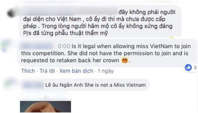 Dân mạng đồng lòng tố Ngân Anh thi chui trên fanpage Miss Intercontinental 2018 - Ảnh 2.