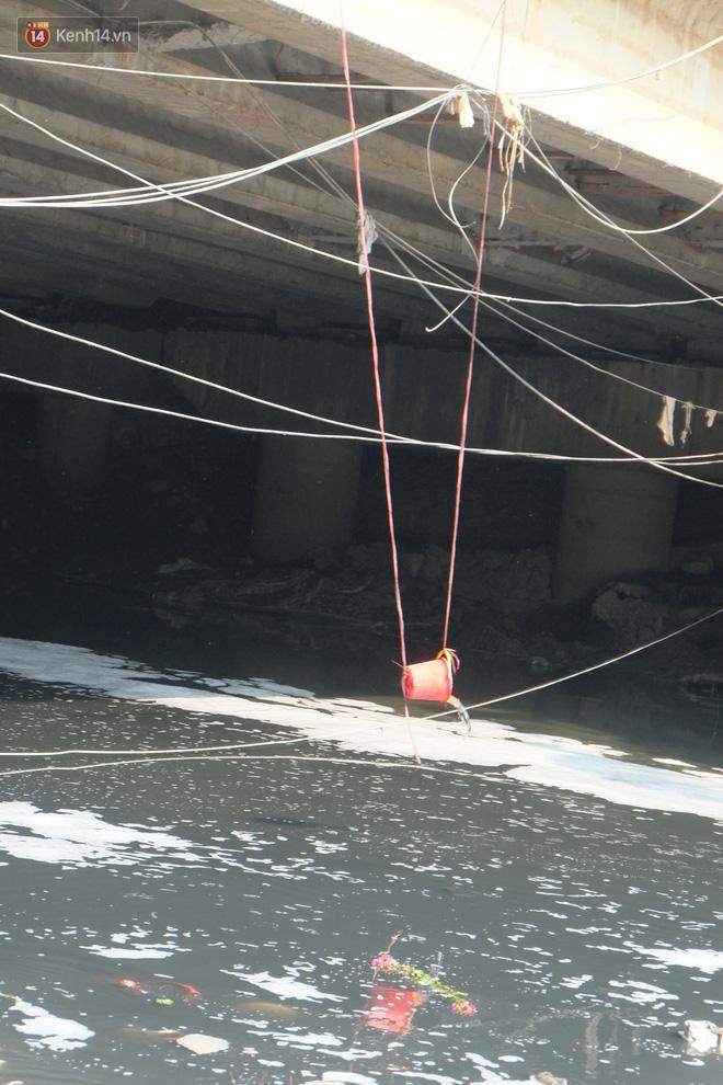 Hà Nội: Cá chép tiễn ông Công ông Táo được TNV hỗ trợ bỏ vào chậu thả xuống lòng sông, nhưng dòng nước đen kịt khiến ai cũng phải nhíu mày - ảnh 9