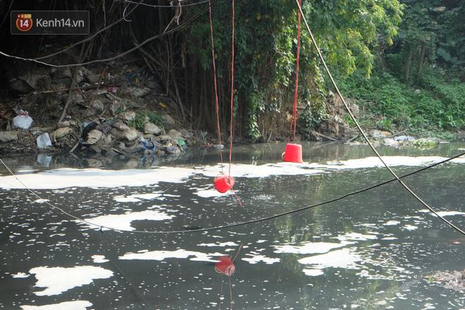 Hà Nội: Cá chép tiễn ông Công ông Táo được TNV hỗ trợ bỏ vào chậu thả xuống lòng sông, nhưng dòng nước đen kịt khiến ai cũng phải nhíu mày - ảnh 10