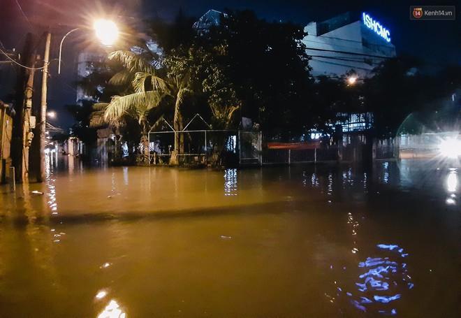 Ảnh: Triều cường tiếp tục dâng cao, nhiều nhà dân trên phố nhà giàu ở Sài Gòn bị cô lập vì xung quanh toàn nước - ảnh 1