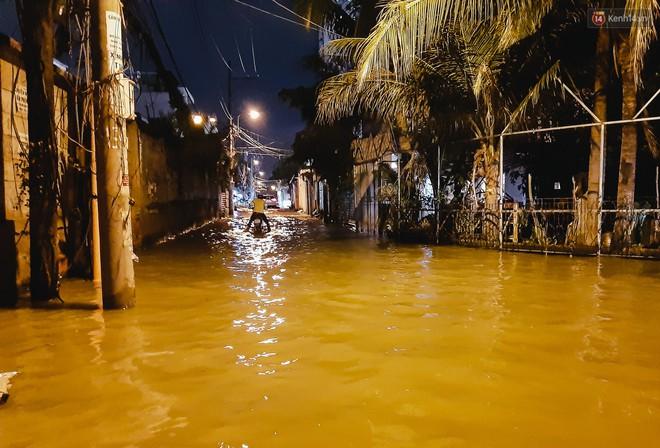 Ảnh: Triều cường tiếp tục dâng cao, nhiều nhà dân trên phố nhà giàu ở Sài Gòn bị cô lập vì xung quanh toàn nước - ảnh 2