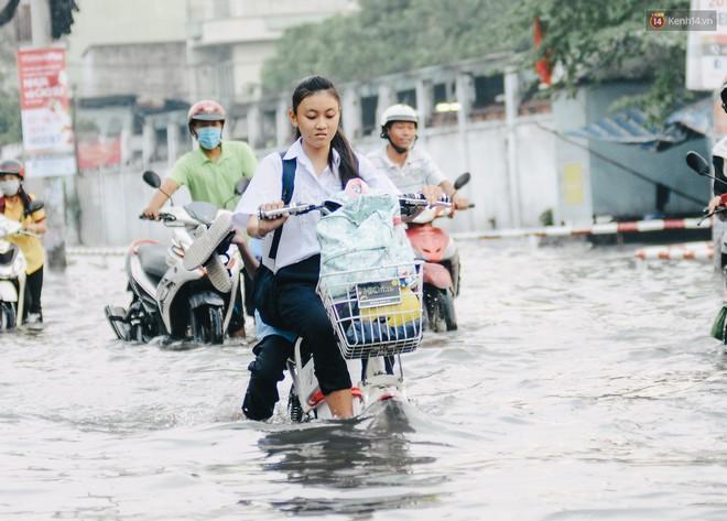 Ảnh: Triều cường tiếp tục dâng cao, nhiều nhà dân trên phố nhà giàu ở Sài Gòn bị cô lập vì xung quanh toàn nước - ảnh 13