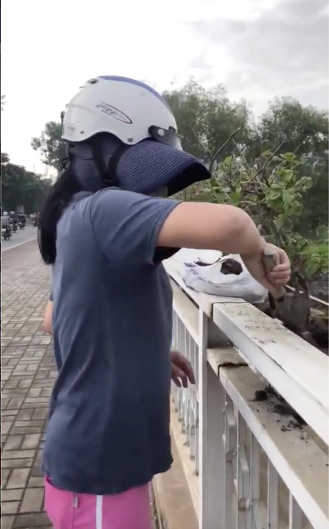 Người phụ nữ ngang nhiên bứng trộm cây cảnh ở Phú Mỹ Hưng, bị nhắc nhở còn cố chấp: Em chỉ xin 1, 2 cây thôi mà - ảnh 2