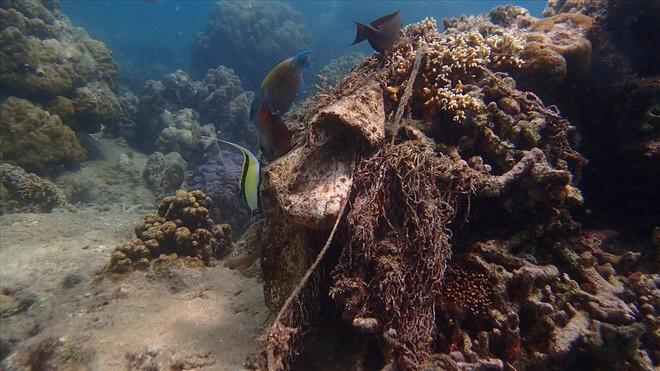 Đáy biển đầy rác thải và cảnh tượng đắng lòng qua ống kính của thợ lặn - ảnh 11