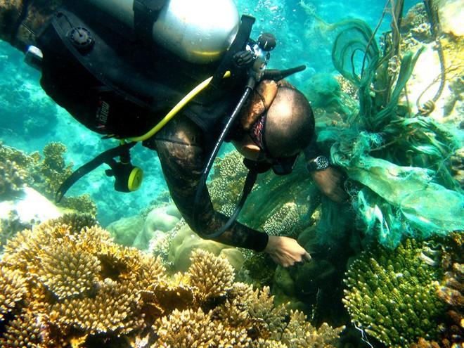 Đáy biển đầy rác thải và cảnh tượng đắng lòng qua ống kính của thợ lặn - ảnh 12