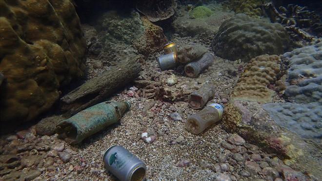 Đáy biển đầy rác thải và cảnh tượng đắng lòng qua ống kính của thợ lặn - ảnh 4