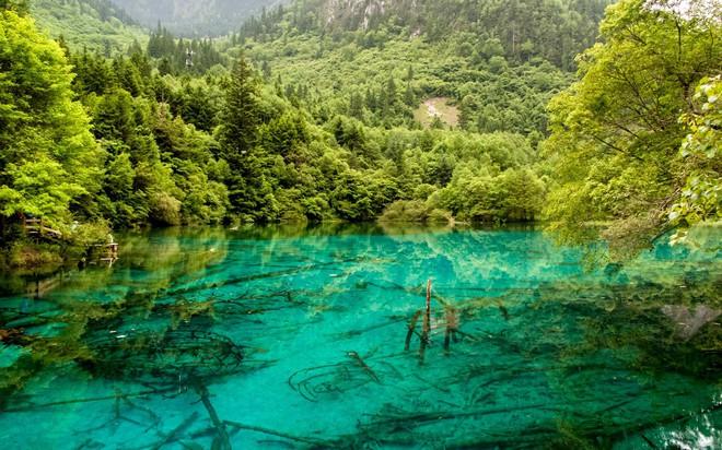 Hòn đảo duy nhất của Việt Nam bất ngờ lọt top những nơi có làn nước trong xanh nhất thế giới, bạn đã đi chưa? - Ảnh 21.