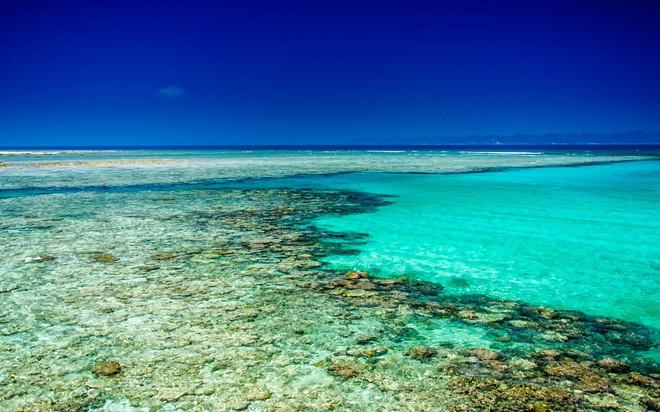 Hòn đảo duy nhất của Việt Nam bất ngờ lọt top những nơi có làn nước trong xanh nhất thế giới, bạn đã đi chưa? - Ảnh 18.