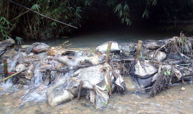 Bắt 2 người đàn ông đổ trộm dầu thải khiến nước sạch sông Đà bị ô nhiễm - Ảnh 1.