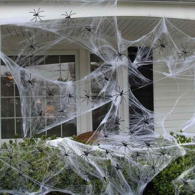 Thói quen dùng mạng nhện giả trang trí mùa Halloween: Siêu rẻ và ma mị, nhưng lại là một thảm họa sinh thái thực sự - ảnh 3