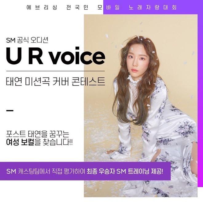 Chỉ SM mới nghĩ ra được: Mở cuộc thi tìm kiếm bản sao của Taeyeon, giải thưởng lên tới... 200 nghìn đồng! - ảnh 1
