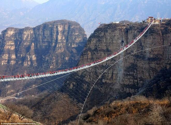 """Nóng: Hơn 32 công trình cầu kính nổi tiếng của Trung Quốc bất ngờ đóng cửa, trong đó có cả """"thiên đường sống ảo"""" Trương Gia Giới - Ảnh 8."""