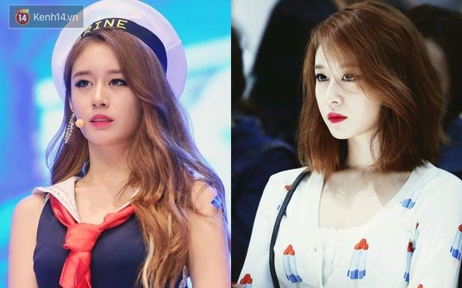 Idol Hàn cắt tóc ngắn: IU, Yoona, Wendy xinh ngất người; Krystal, Suzy lại thuộc nhóm xuống sắc - ảnh 5