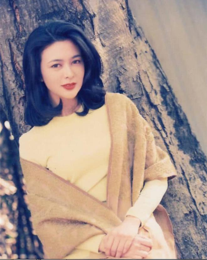 Xao xuyến nhan sắc U30 của Quan Chi Lâm, bảo sao Lưu Đức Hoa phải thốt lên: Cô ấy là người đẹp nhất tôi từng gặp - ảnh 18