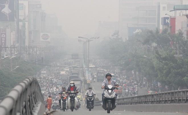 Nghiên cứu mới công bố: Ô nhiễm không khí có thể gây rụng tóc, hói đầu - ảnh 3
