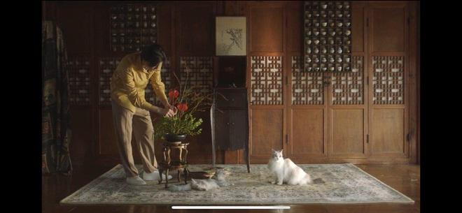 Min táo bạo đưa motif nhân thú vào MV Vì Yêu Cứ Đâm Đầu, Đen và Justatee không thấy đâu nhưng giật thót khi xem đến cái kết! - ảnh 14