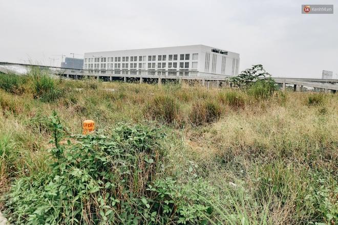 Bến xe Miền Đông mới trị giá 4.000 tỉ đồng đã hoàn thành nhưng vẫn án binh bất động, cỏ dại phủ kín xung quanh - ảnh 10