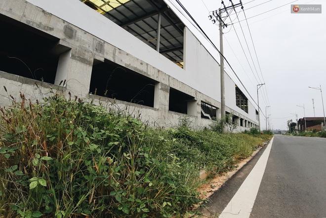 Bến xe Miền Đông mới trị giá 4.000 tỉ đồng đã hoàn thành nhưng vẫn án binh bất động, cỏ dại phủ kín xung quanh - ảnh 19