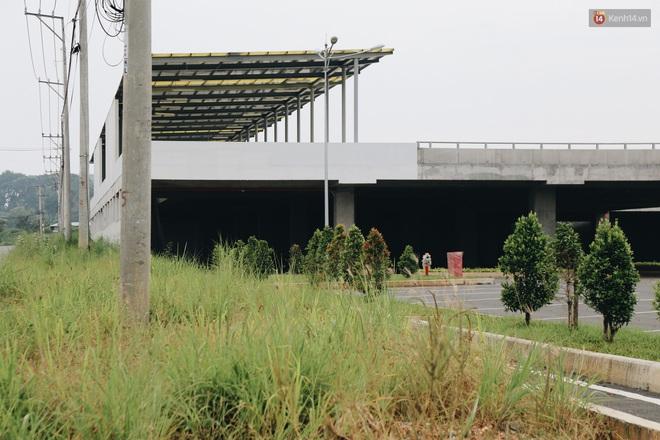 Bến xe Miền Đông mới trị giá 4.000 tỉ đồng đã hoàn thành nhưng vẫn án binh bất động, cỏ dại phủ kín xung quanh - ảnh 13