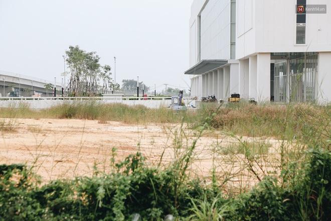Bến xe Miền Đông mới trị giá 4.000 tỉ đồng đã hoàn thành nhưng vẫn án binh bất động, cỏ dại phủ kín xung quanh - ảnh 8