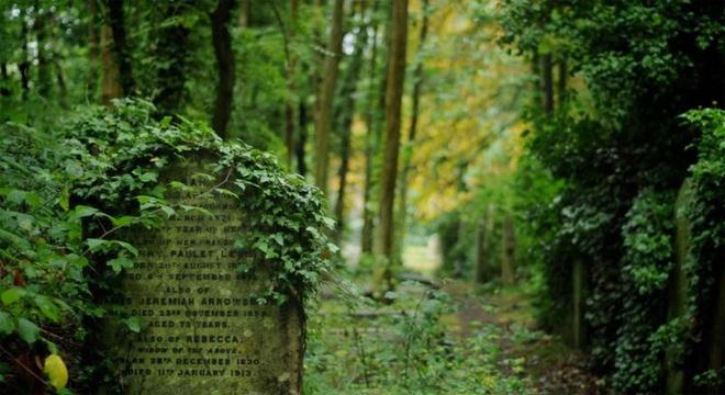 Vẻ đẹp của các nghĩa trang cổ khắp thế giới - ảnh 9