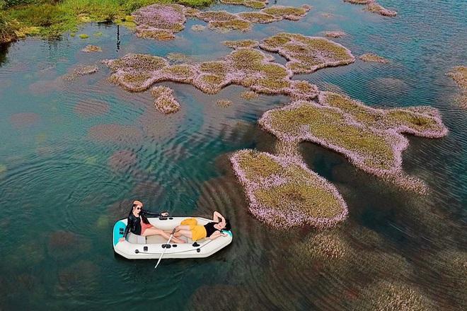 """Dân mạng phát sốt trước hồ Tảo Hồng có thật 100% giữa Việt Nam, lên hình muốn """"ảo tung chảo"""" thì phải nhớ chỉnh màu? - Ảnh 5."""