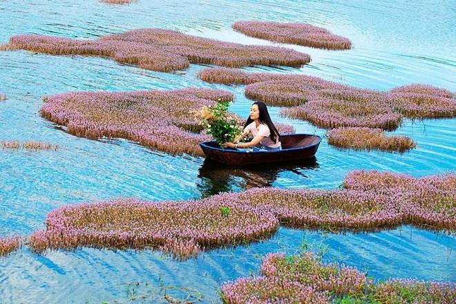 """Dân mạng phát sốt trước hồ Tảo Hồng có thật 100% giữa Việt Nam, lên hình muốn """"ảo tung chảo"""" thì phải nhớ chỉnh màu? - Ảnh 10."""