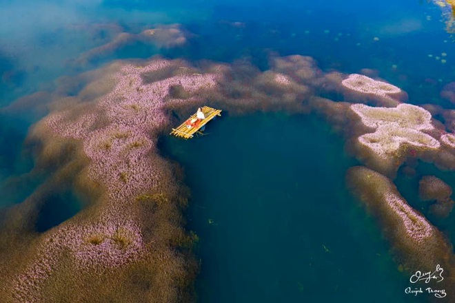 """Dân mạng phát sốt trước hồ Tảo Hồng có thật 100% giữa Việt Nam, lên hình muốn """"ảo tung chảo"""" thì phải nhớ chỉnh màu? - Ảnh 9."""