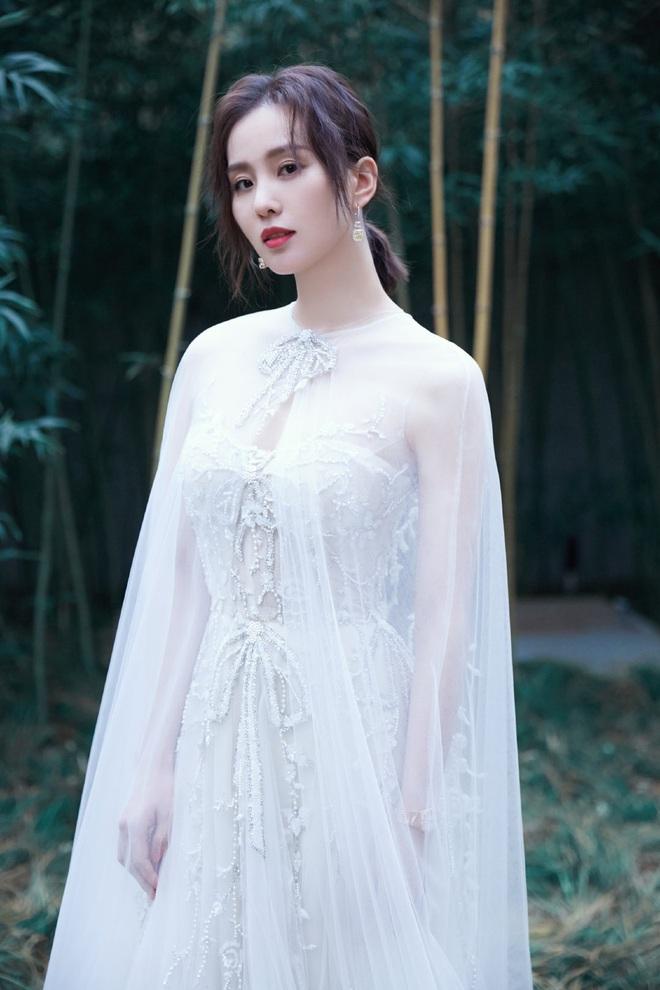 Chung sự kiện: Angela Baby khệ nệ xách váy khủng, Triệu Lệ Dĩnh – Lưu Thi Thi lên đồ nhẹ nhàng hơn nhưng chẳng hề bị lép vế - ảnh 16