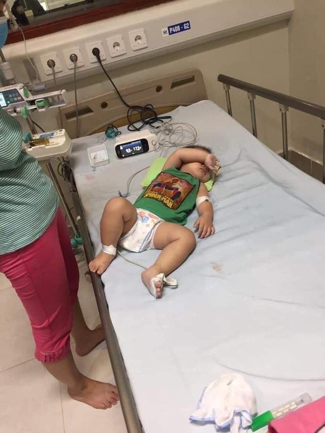 Gia đình ở Sóc Sơn mất 3 đứa con trong 7 tháng, trong đó 2 bé có liên quan tới vi khuẩn gây hoại tử Whitmore - ảnh 3