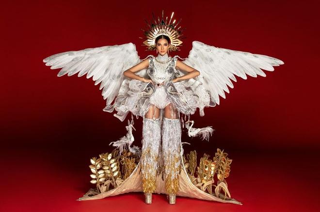 Netizen ủng hộ Hoàng Thùy mang trang phục Cò sải cánh tại Miss Universe 2019 - ảnh 11