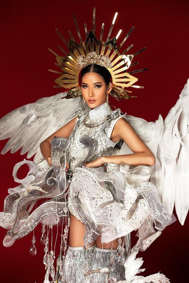 Netizen ủng hộ Hoàng Thùy mang trang phục Cò sải cánh tại Miss Universe 2019 - ảnh 10