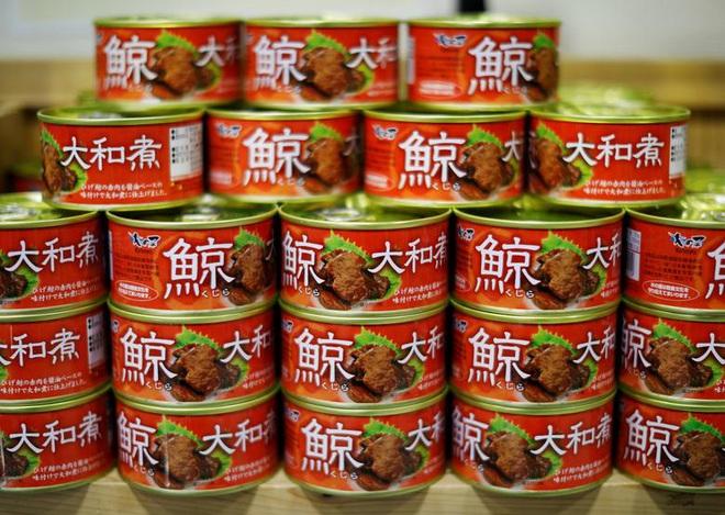 Đăng video ăn thịt cá voi xanh mua ở Nhật khiến dân mạng tranh cãi nảy lửa, Quỳnh Trần JP lên tiếng đáp trả cực gắt - Ảnh 18.