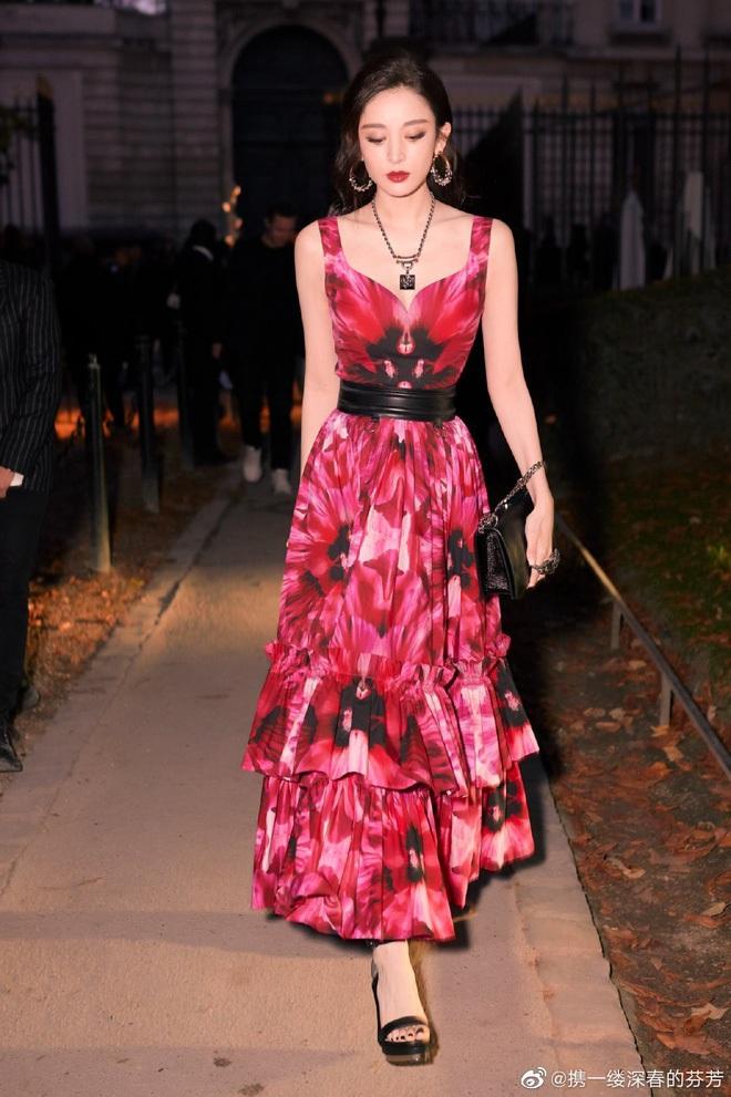 Nữ hoàng thảm đỏ Cbiz 2019: Phạm Gia sa sút phong độ, Triệu Vy ngày một đẳng cấp, Angela Baby và Quan Hiểu Đồng đua đồ Haute Couture - ảnh 37