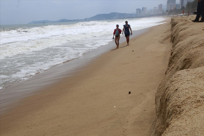 """Trước bão số 6: Kỳ lạ """"tường"""" cát cao gần 1m xuất hiện ở biển Nha Trang - ảnh 1"""