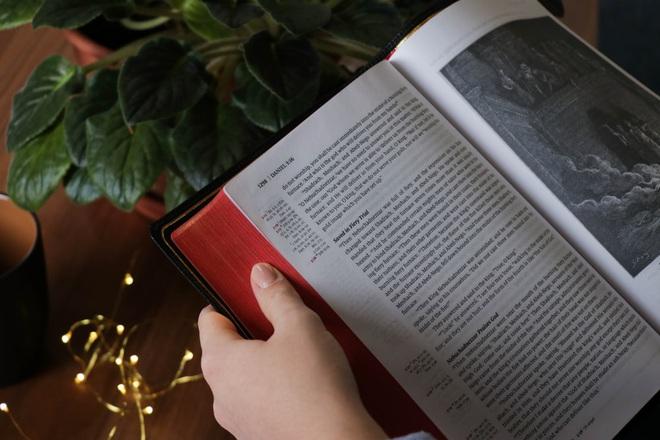 Bạn thích mua sách nhưng không bao giờ đọc hết chúng, vậy làm thế nào để đọc ít mà vẫn biết nhiều, thông minh lên? - ảnh 2