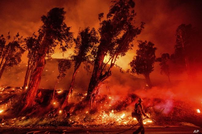 Toàn cảnh Trái đất năm 2019 thực sự rực cháy theo đúng nghĩa đen: Amazon cháy kỷ lục, nhưng đằng sau còn vấn đề hết sức đáng lo ngại - ảnh 1