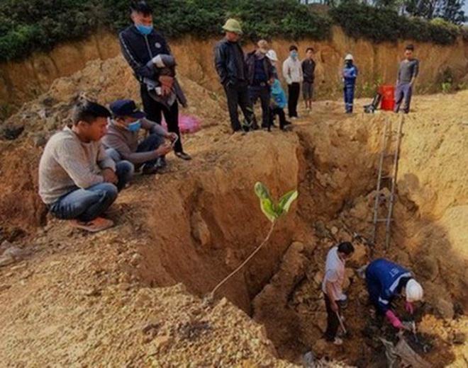 Chủ tịch HĐQT hợp tác xã Môi trường xanh Bắc Sơn chủ mưu vụ đổ, chôn chất thải nguy hại ở Sóc Sơn - ảnh 1