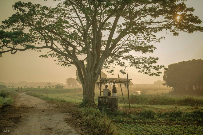6 bộ phim giúp điện ảnh Việt tăng hạng năm 2019: Đầu năm Hai Phượng soán ngôi, cuối năm Chị Chị Em Em - Mắt Biếc cung đấu - Ảnh 22.